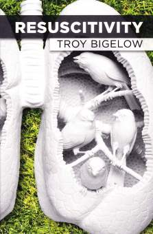 Bigelow book cover