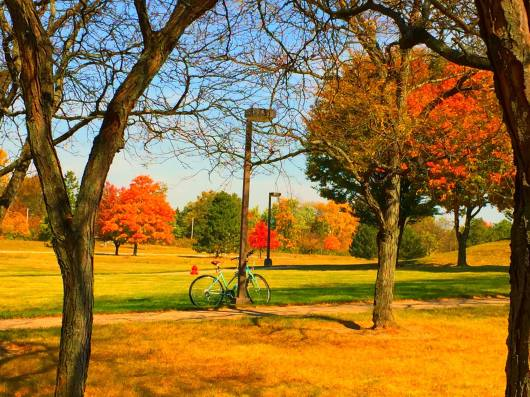 bicycle at north campus ivy tech fall 2015